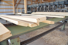 Our Mill, Rocky Mountain Timber Products, Del Norte, Colorado
