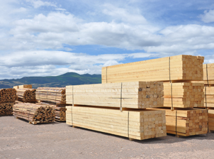 House logs and lumber: Rocky Mountain Timber Products, Del Norte, Colorado