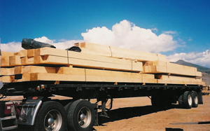Cutoms Beams, Rocky Mountain Timber Products, Del Norte, Colorado