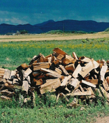 Fire Wood, Rocky Mountain Timber Products, Del Norte, Colorado